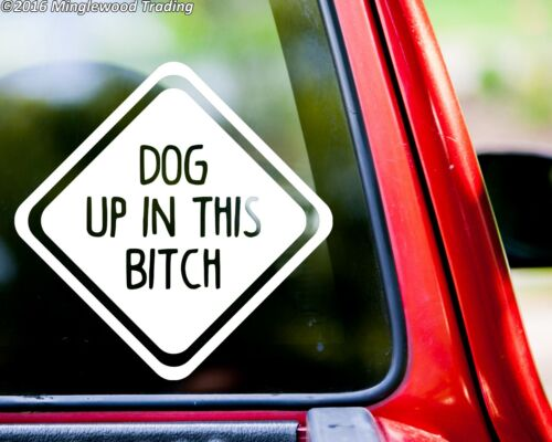 Puppy Lab Pitbull Canine DOG UP IN THIS BITCH Vinyl Decal Sticker