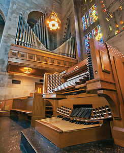 Details about Light and Dark and In Between: 4 Organs in Baltimore, Diane  Luchese, organist