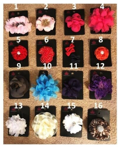 Paparazzi Jewelry and Accessories Hair Clips Shoe Clips Purse Clips Variety