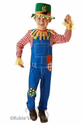 Boys Scarecrow Costume Kids Oz Fancy Dress Outfit School Book Week dressup Child
