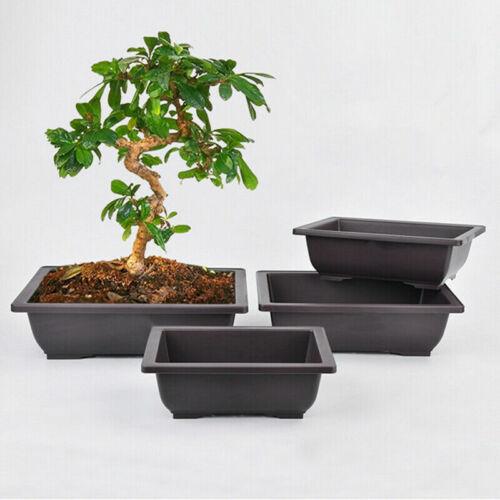 1-5x Plant Pot Case Balcony Basin Flower Bonsai Succulent Bowl Nursery Box Tray