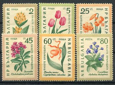1164-1169 Ungebraucht 100% Blumen Bulgarien 1960 Mi