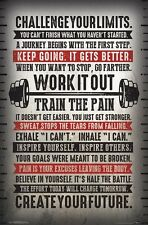 CHALLENGE YOUR LIMITS - MOTIVATIONAL POSTER - 22x34 INSPIRATIONAL 15817