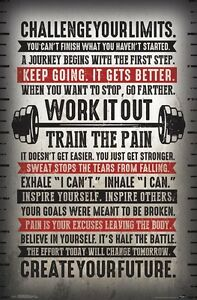 CHALLENGE-YOUR-LIMITS-MOTIVATIONAL-POSTER-22x34-INSPIRATIONAL-15817