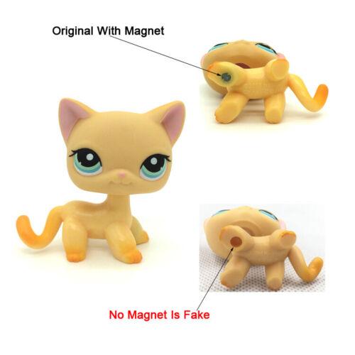 Littlest Pet Shop Animals LPS #339 Orange Short hair Cat cute Kitty