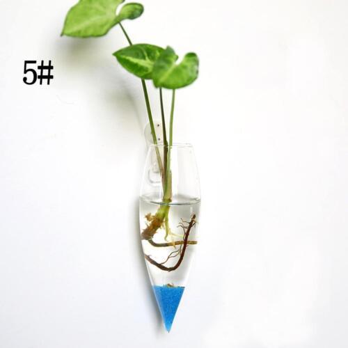Irregular Wall Hanging Glass Planter Air Plant Terrarium Flower Pots Garden