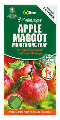 Vitax Apple Maggot Monitoring Trap Protects Against Apple Moths To Clear Out Annoyance And Quench Thirst Yard, Garden & Outdoor Living