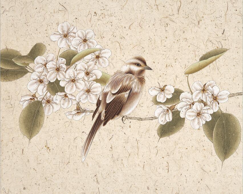 3D Netter grauer Vogel 625 Fototapeten Wandbild Fototapete BildTapete Familie