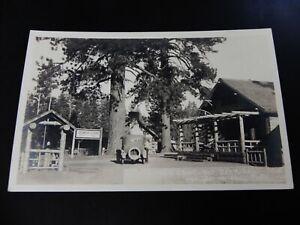 Lowe-039-s-Camp-Big-Bear-Lake-Lowes-California-CA-RPPC-Real-Photo-Car-Market-Store