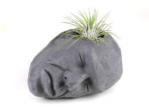 Concrete-Head-Air-Plant-Holder-Succulent-Planter-Handmade-Home-amp-Garden-Decor