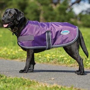Details About New Weatherbeeta Windbreaker 420d Dog Rug Coat Purple Black Showerproof