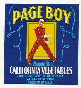 10 Old Vintage - California Vegetable CRATE LABELS PAGE BOY, PINTO , HEFTY,ETC..