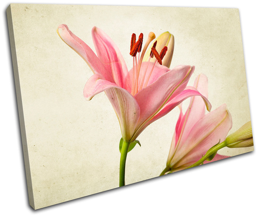 Lily Flowers Floral SINGLE TOILE murale ART Photo Print