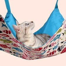Cat Beds, Hammocks & Pods