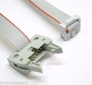 Cavo Prolunga Flat Cable 3M 10 poli con 2 connettori M-F lunghezza 400 cm