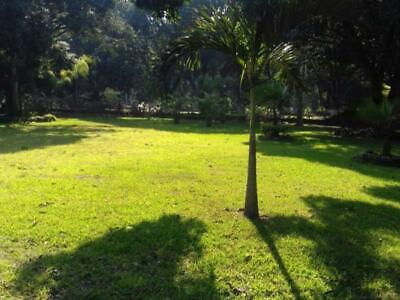 Terreno en Venta en Jalcomulco