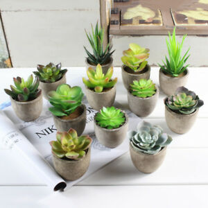 Image Is Loading Artificial Plants Desert Craft Floral Succulents Pot Fake