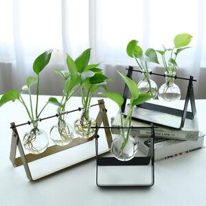 Vase-Boule-Suspension-de-plantes-en-verre-Container-a-Fleurs-Maison-Jardin-Decor