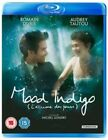 Mood Indigo - Two Disc Collectors Edition UK BLURAY