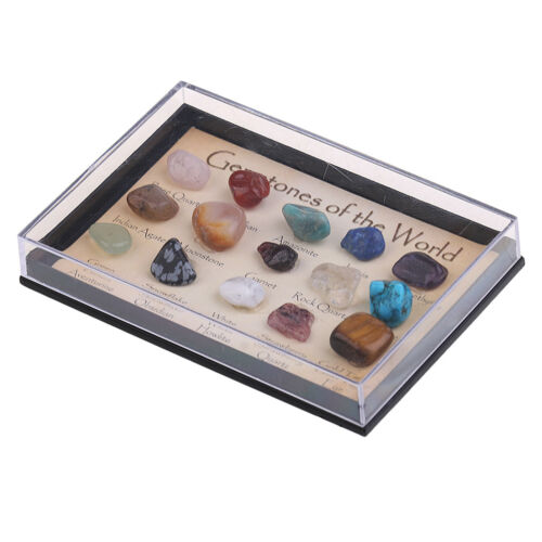 15Pcs Small Polished Gemstones of the World in a Mini Display Case Gifts