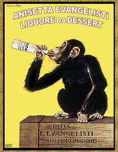 Image Is Loading Choose Paper Or Canvas Poster Aniseta Drinking Monkey