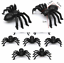 Black-Spider-Realistic-Halloween-Decoration-Halloween-Props-Animal-Black-50pcs thumbnail 7
