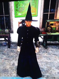 Details about Fallout 76 xbox one witch Costume And Witch Hat