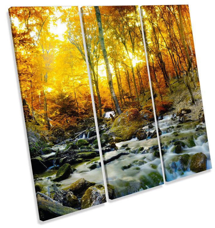 Sunset Otoño pared Bosque Creek Río agudos LONA pared Otoño arte Foto impresión Cuadrado 6713bd