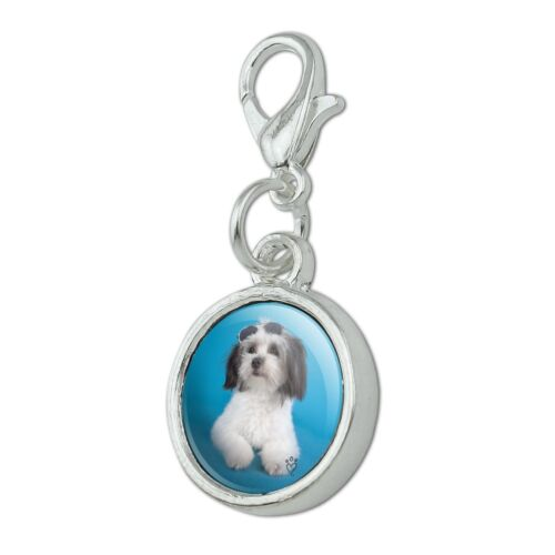 Maltese Papillion Puppy Dog Sunglasses Bracelet Charm with Lobster Clasp