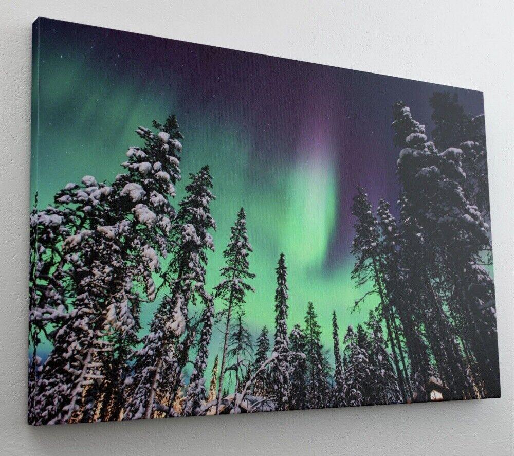 Nordlicht Polarlicht Wald Tannen Winter Leinwand Bild Wandbild Kunstdruck L0657
