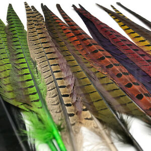 RINGNECK-PHEASANT-TAIL-PAIR-Fly-Tying-Natural-amp-Dyed-Long-Feathers-by-Hareline
