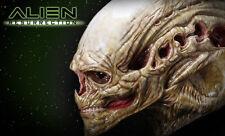Sideshow Newborn Alien Resurrection Life-Size Head Prop Replica CoolProps Alien