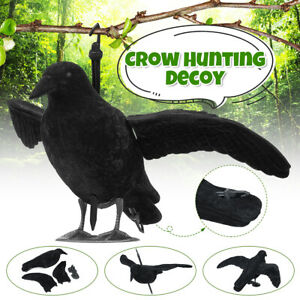Realistic-Full-Body-Crow-Raven-Hunting-ShootGarden-Decoy-Scarer-Greenhand-Gear