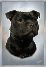 Staffordshire Bull Terrier A6 Blank Card 7 by Starprint