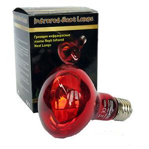 Reptile Tortoise Vivarium Infra Rouge Éclairage Infrarouge Lampe Chaleur 100w À Visser