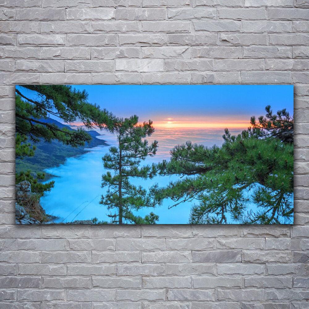 Photo sur toile Tableau Image Impression 120x60 Nature Arbres