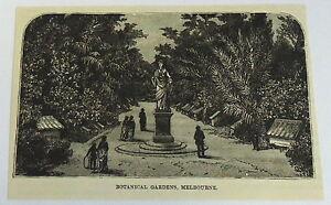 1883-Revista-Grabado-Botanico-Jardines-Melbourne-Australia