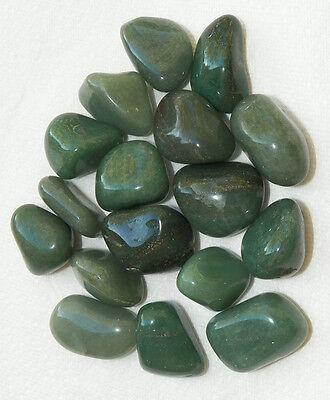 8 oz Large GREEN QUARTZ PRASIOLITE Tumbled Stones Crystal Healing Jewelry 1//2 lb