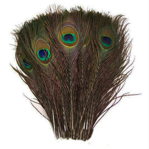"50 x 100% Natural Peacock Feathers 10"" 12"" Tail for craft party genuine real"