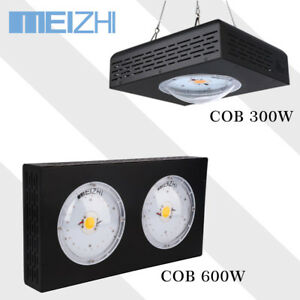 Meizhi Cree Cob 300w 600w Cxa3070 Led Grow Light Full