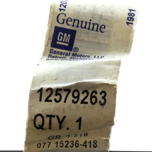 OEM 4.8L 5.3L 6.0L Engine Oil Fluid Level Indicator 2003 Express Savana 12579263