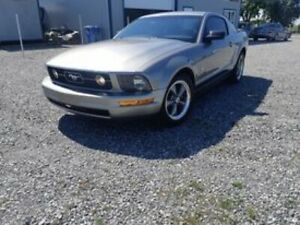 2008 Ford Mustang Ford Mustang Pony Edition