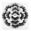 8D-Mink-Eye-Lashes-7-Pairs-25mm-Woman-039-Fashion-Wispy-Fluffy-Cruelty-free-Thick-L thumbnail 1