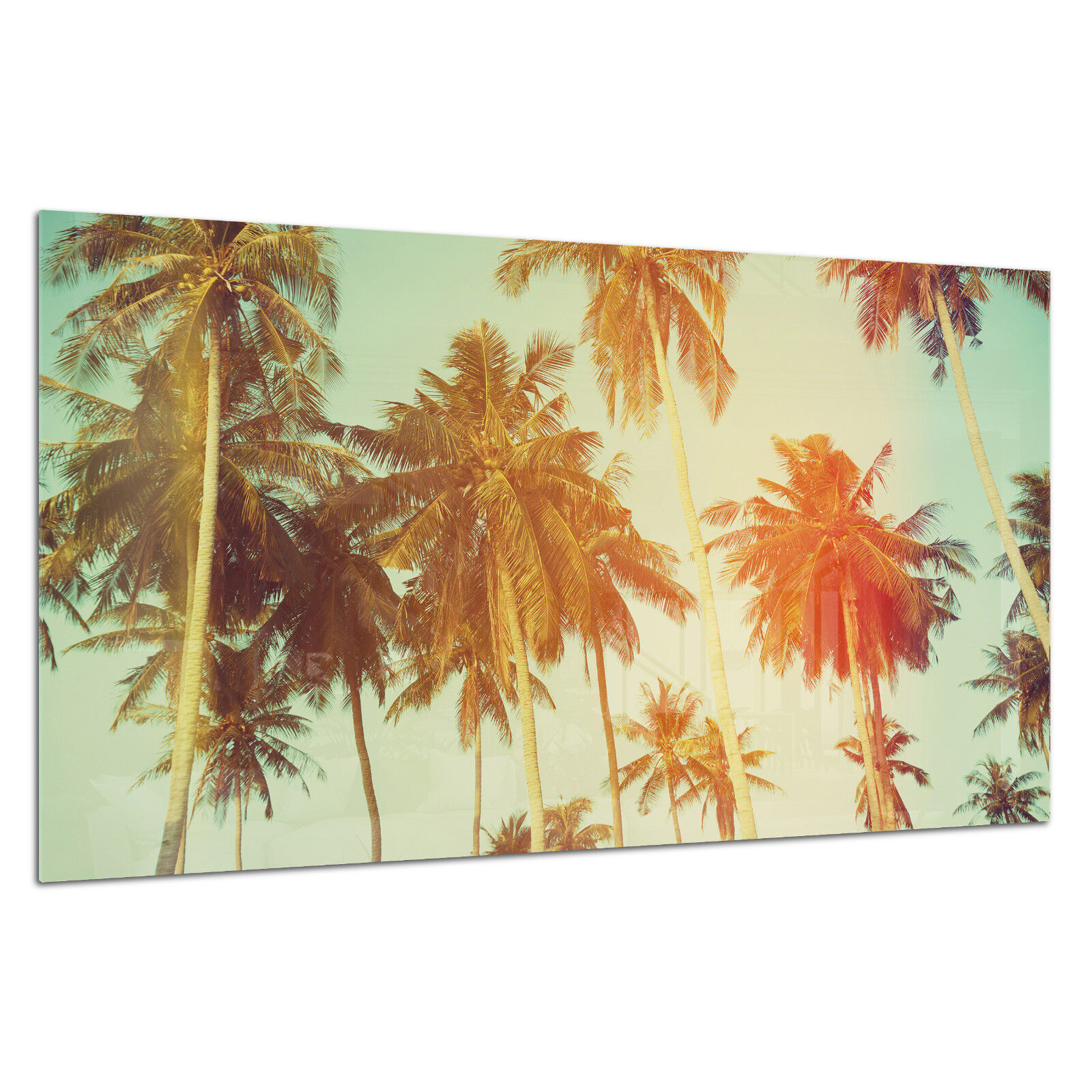 Tempered Glass Photo Print Wall Art Picture Palms Tropical Summer Prizma GWA0338