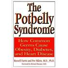 The Potbelly Syndrome: How Common Germs Lead to Obesity, Diabetes and Heart Disease by Per Marin, Russel Farris (Paperback, 2006)