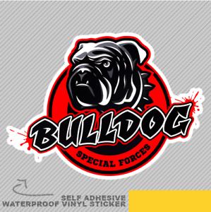 Bulldog cabeza Ventana Pegatina Calcomanía Fuerzas especiales de Vinilo Coche Furgoneta Bici 2712