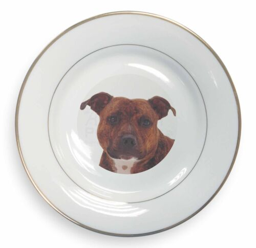 Staffordshire Bull Terrier Dog Gold Rim Plate in Gift Box Christmas P, ADSBT6PL
