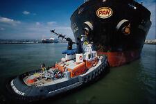 491091 Tugboat A4 Photo Print