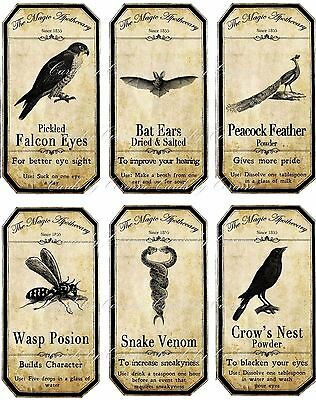 Halloween animal insect apothecary bottle label stickers set of 6 glossy set 2