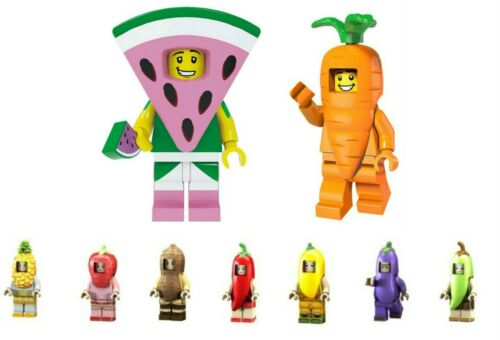 Food Mini Figure NEW UK Seller Fits Major Brand Blocks Bricks Watermelon